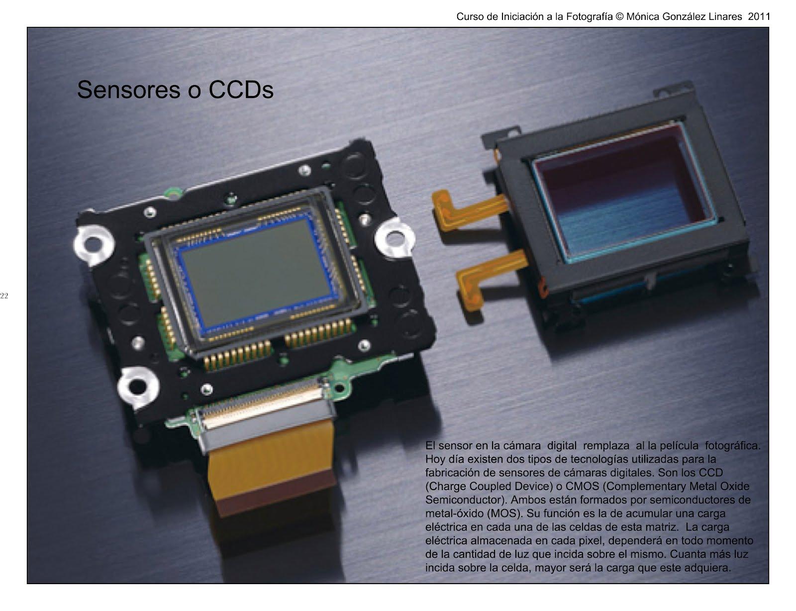 Fotografia de Moda : Sensores o CCDs