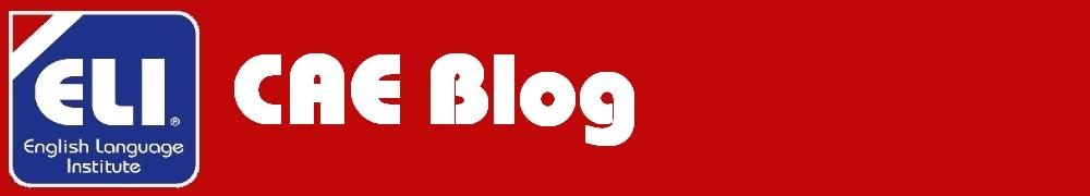 CAE Blog
