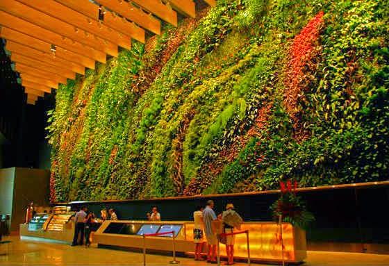 Fotos de jardines y agricultura vertical for Fotos de jardines particulares
