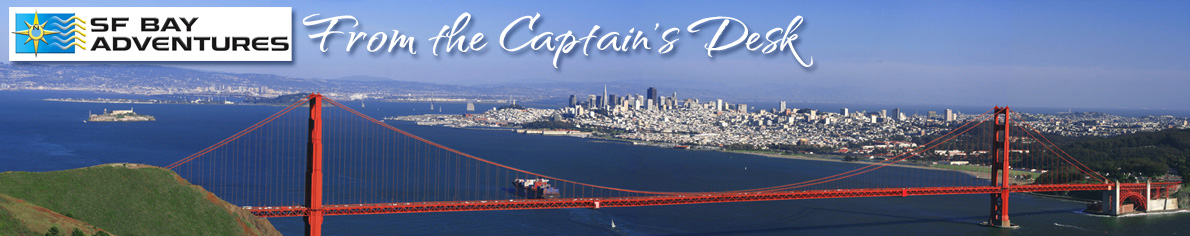 SF Bay Adventures – From the Captain's Desk