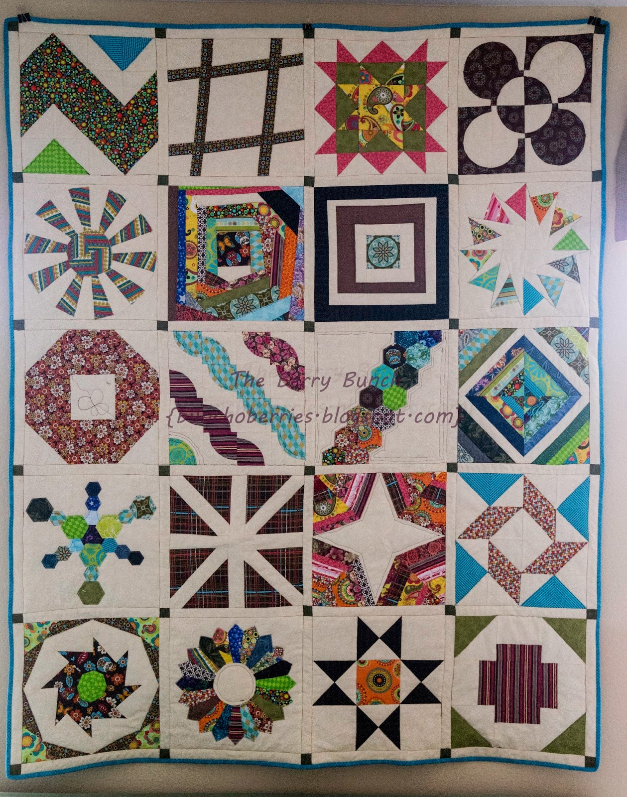 The Berry Bunch: 2012 Craftsy Block of the Month - Finished {2014 Sew-A-Long}