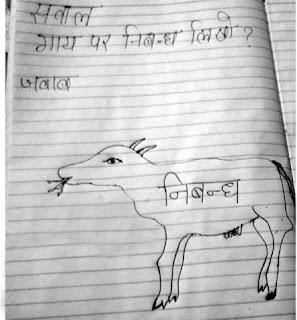 Bihari essay on cow