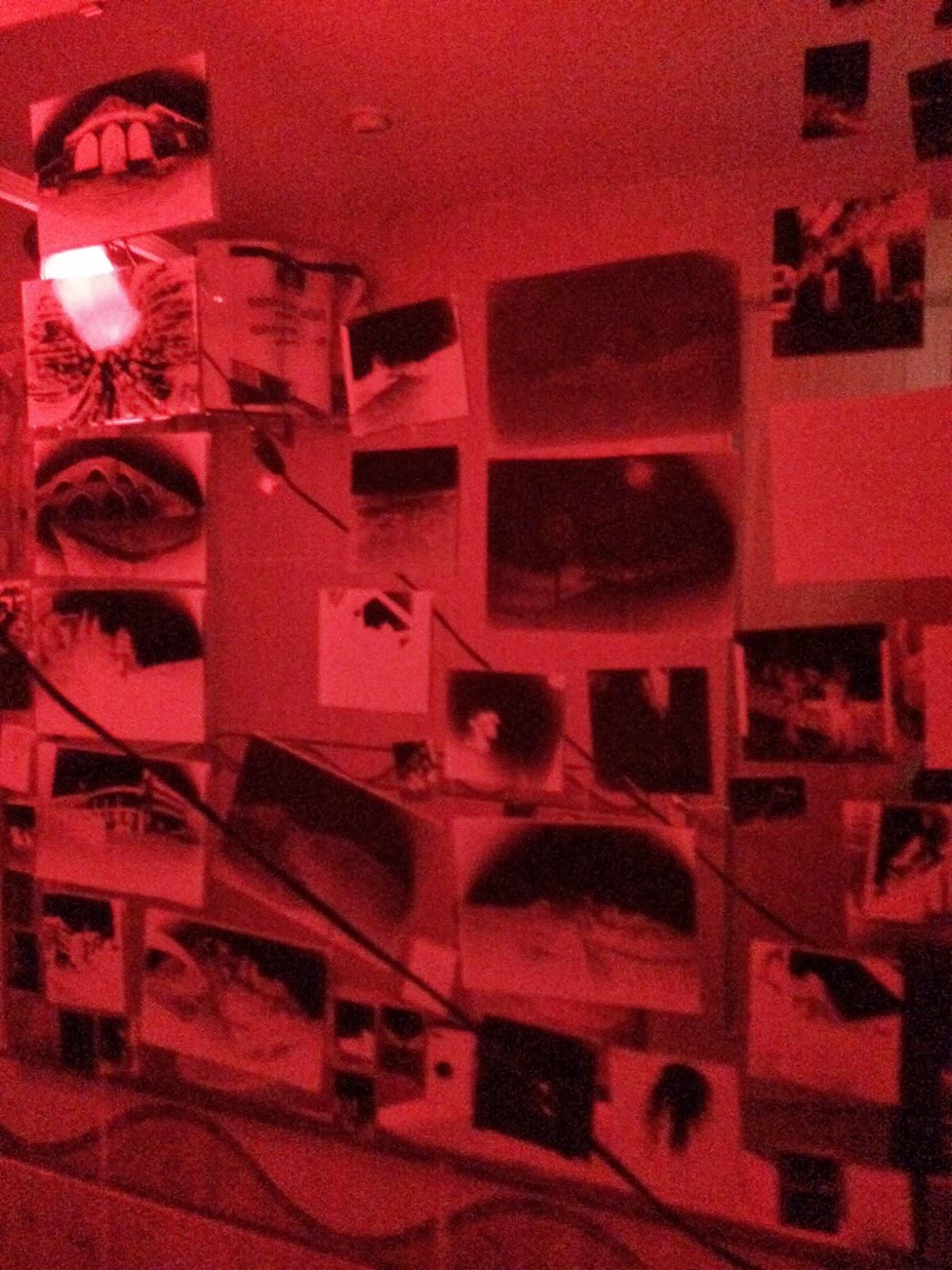 Fotolateras laboratorio Tener-Cultura