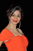 Shilpi Sharma Photos at Green Signal Audio-thumbnail-18
