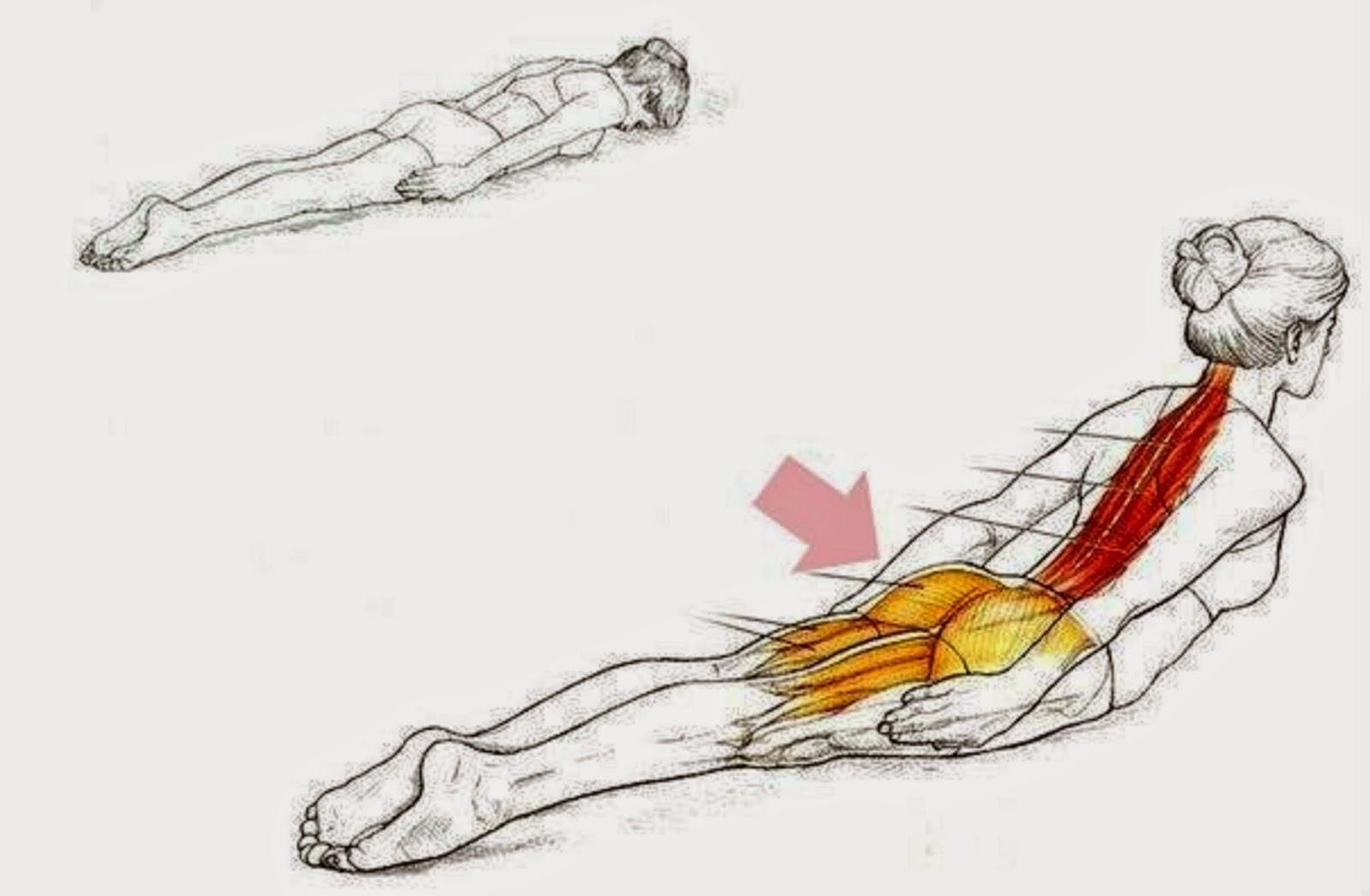 Comme se délivrera de la myodynie dans le dos