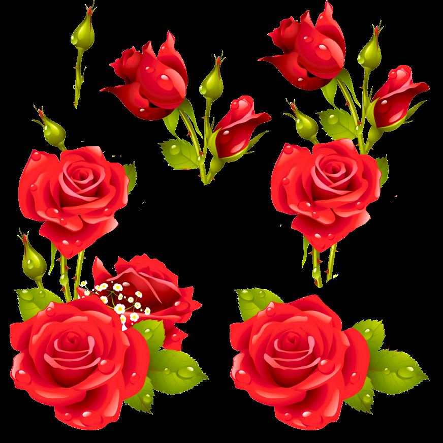 Decora con flores laminas de rosas para decoupage y for Laminas de decoracion para pared