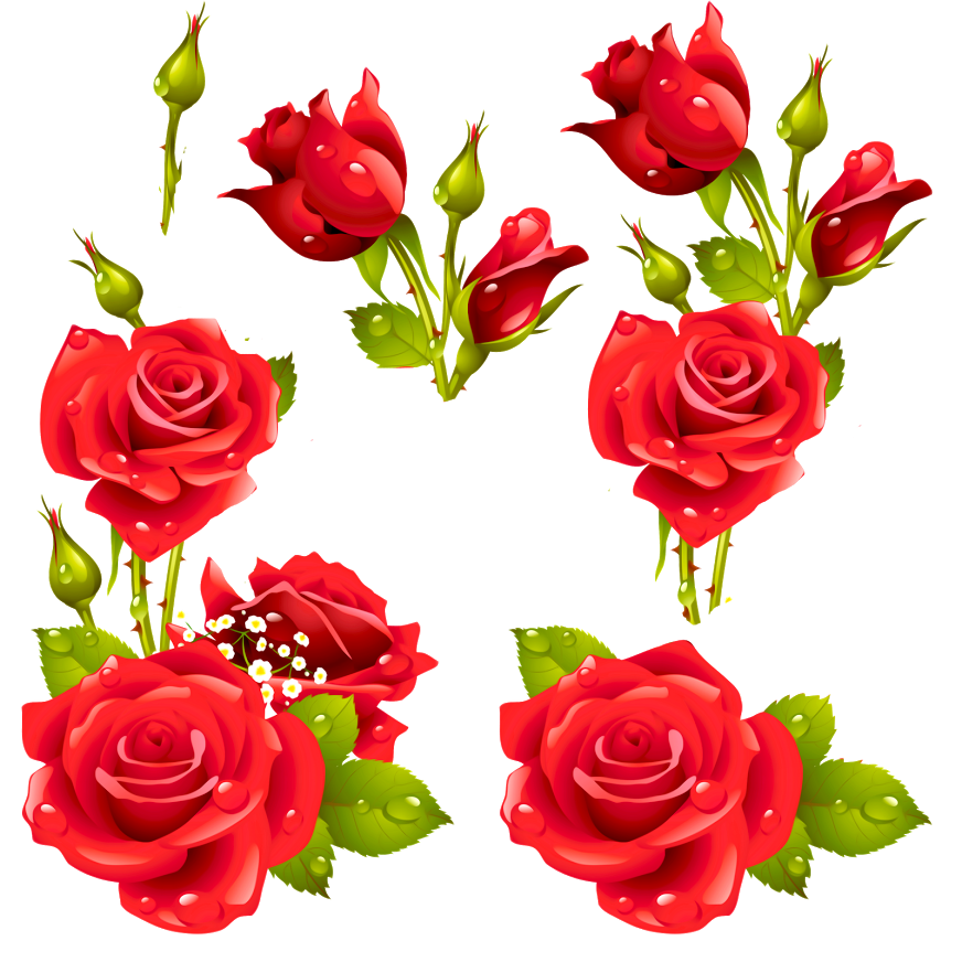 Decora con flores laminas de rosas para decoupage y for Laminas para pared