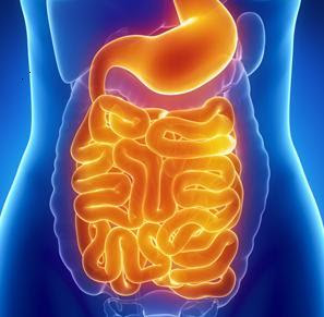 how to get rid of gas problem in stomach naturally