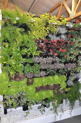 Negocios y oportunidades mayo 2011 for Plantas utilizadas en jardines verticales