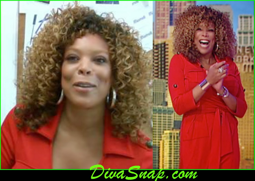 WENDY NEW WIG: WENDY WILLIAMS WEAR BIG CURLY WIG - DivaSnap.com