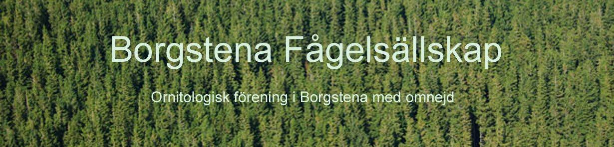 Borgstena Fågelsällskap