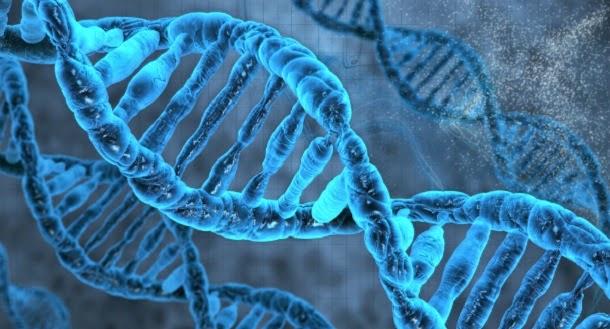 DNA consegue sobreviver à viagem de reentrada na Terra
