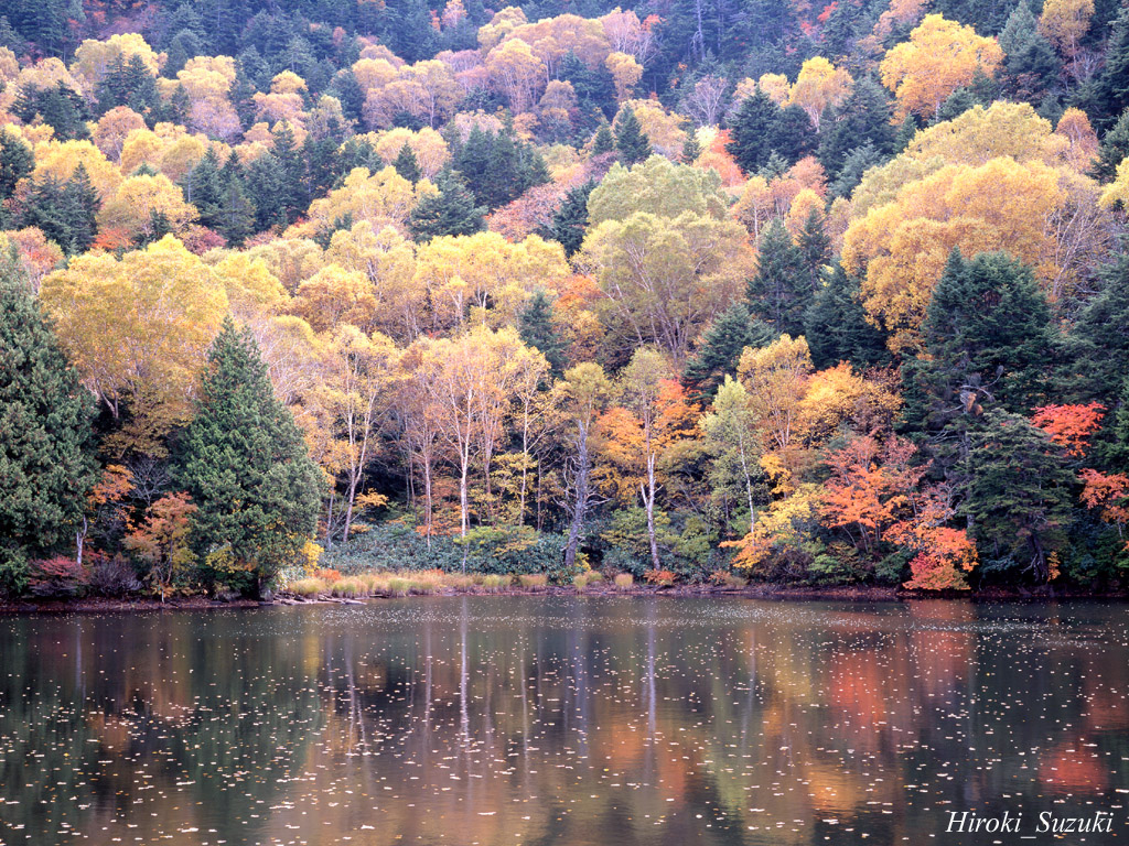 Beautiful Fall Desktop Wallpaper