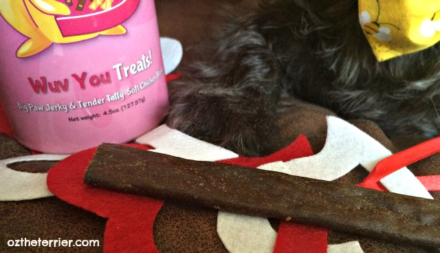 Oz the Terrier Big Paw Jerky Wuv You Treats - Jones Natural Chews