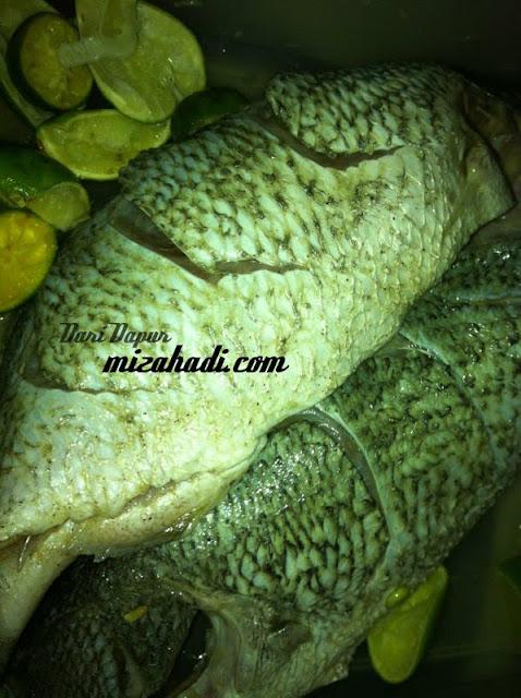 www.mizahadi.com