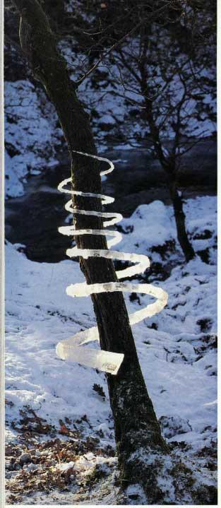 Peinture, Sculpture le topic de l'art contemporain ou pas Andy%2BGoldsworthy