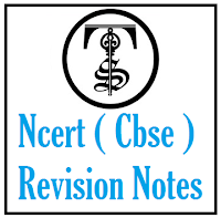 NCERT Solutions for Class 6th English: Chapter 5 – A Different Kind of School, NCERT Revision Notes, CBSE NCERT Solution Online Free.