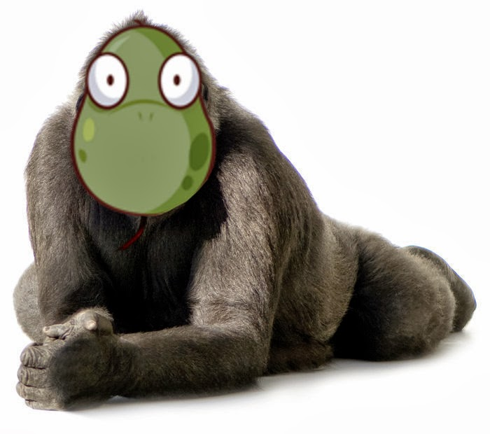 Gorilla Vs Snake