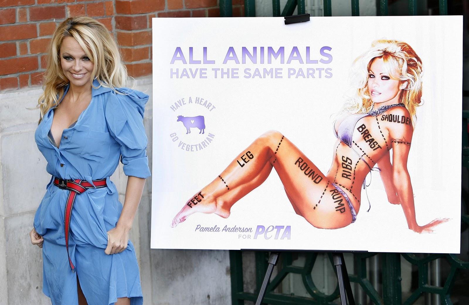 http://3.bp.blogspot.com/-NJLsOKg022g/TnjJNfeNumI/AAAAAAAACOI/z1kT1mnxqxE/s1600/pamela-anderson-peta-animali.jpg