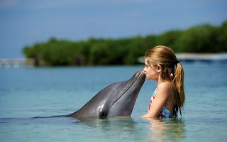 Little Girl Kissing Dolphin HD Wallpaper
