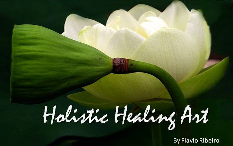 HOLISTIC HEALING ART