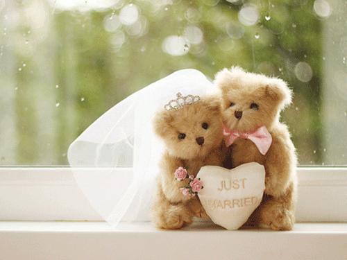tierna imagen de boda de ositos