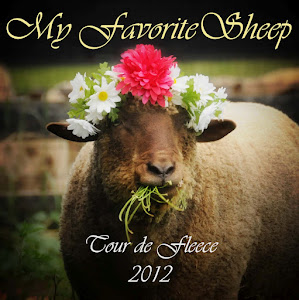 2012 Tour de Fleece