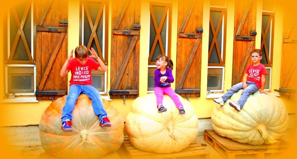 Blog Senda Viva, hotel ideal familias con niños
