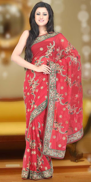 Wedding-Party-Wear-Saree 2013-14