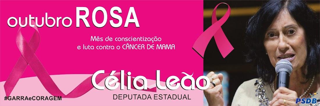 Deputada Estadual Célia Leão