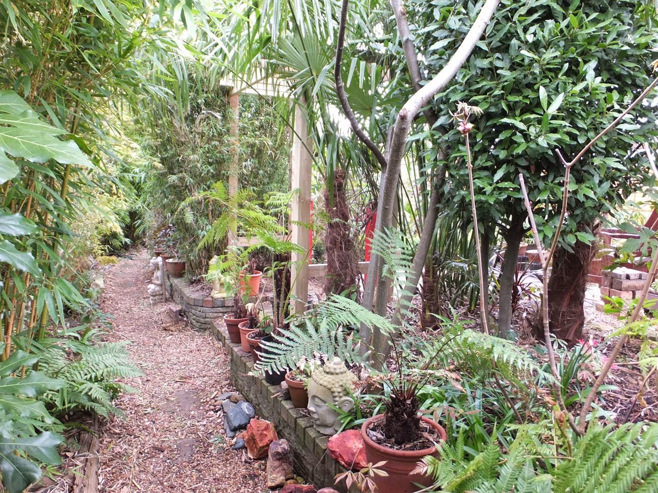 Alternative Eden Exotic Garden: Spring Scenes in the Garden
