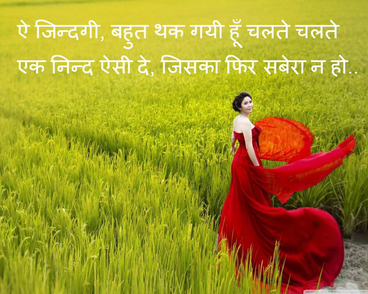 Image Of Love Shayari