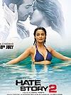 Hindi Movie Hate Story 2 2014 Hindi Flim Review