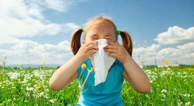 estornudo- polen