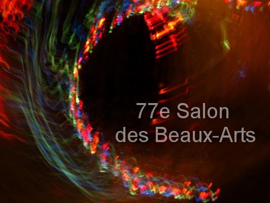 Office de tourisme 77e salon des beaux arts 2012 for Salon des beaux arts