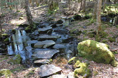 Cutler Coast stream with stepping stones