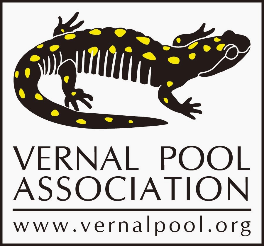 Learn more about vernal pools at