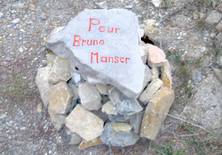 """Cliquer pour """"Bruno Manser"""""""