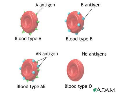 go with each blood type