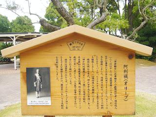 兵庫県・須磨離宮公園 オリーブ