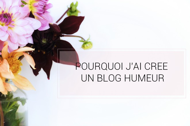 blog-humeur-avis-conseils-catégories
