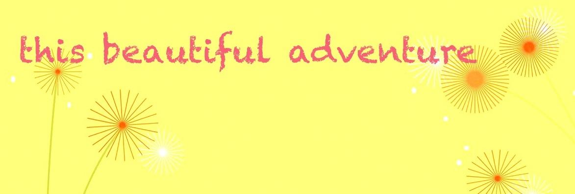 this beautiful adventure