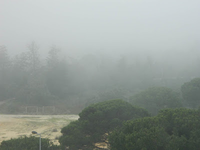 fog photos
