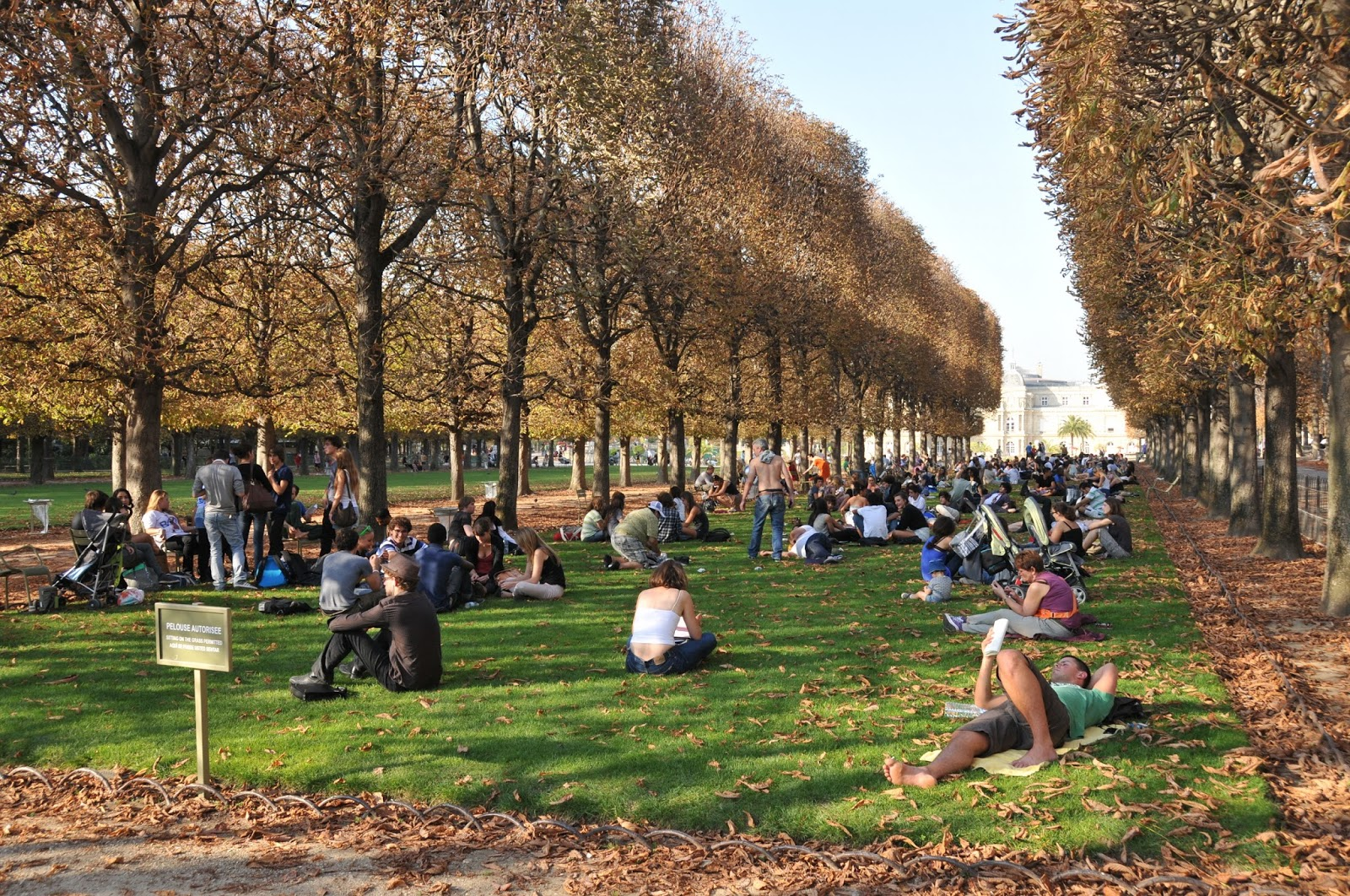 the garden is almost always occupied by students on the back lawns groups along the central lawn and walkers on the various paths to the external parts of - Jardin Du Luxembourg