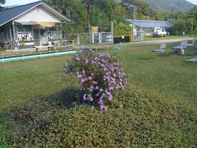 大阪府交野市・大阪市立大学 理学部付属 植物園