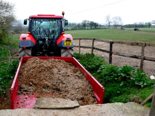 horse manure many people consider the gold standard in manure