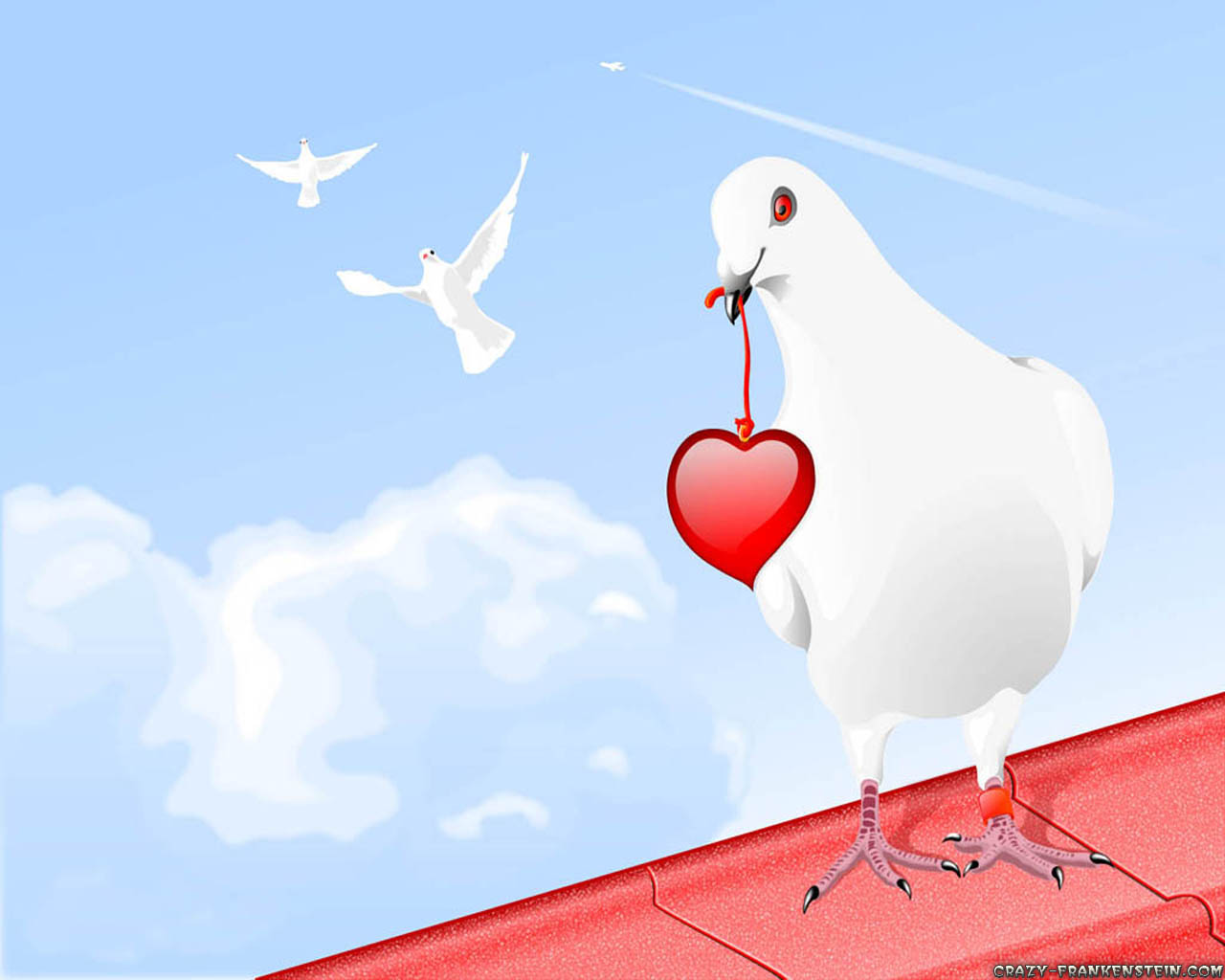 http://3.bp.blogspot.com/-NMyKCcINyvs/Ty3D-i35K4I/AAAAAAAAAOE/agaDaAqCttw/s1600/white-pigeon-red-heart-1280x1024-love-wallpapers.jpg