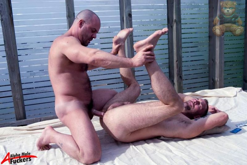 gay muscle twink sex