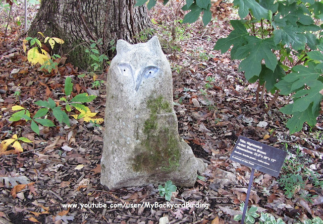 """""""Nightwatch"""" Owl Statuary Carved In Granite"""