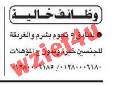 وظائف جريدة الأهرام السبت 12 يناير 2013 -وظائف مصر السبت 12-1-2013